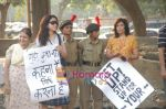 at Anti Pakistan artists meet by Ashok Pandit and Sashi Ranjan in Pushpa Narsee Park on 8th December 2008(28).JPG