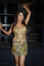Laila Rouass On location of Film Shoot on Sight in Juhu Hotel on Jan 28, 2008 (3).jpg