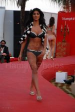 Lingerie Fashion Show by Triumph at Hotel Renissance on 29th Jan 2008 (24).jpg