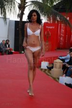 Lingerie Fashion Show by Triumph at Hotel Renissance on 29th Jan 2008 (27).jpg