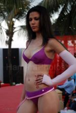 Lingerie Fashion Show by Triumph at Hotel Renissance on 29th Jan 2008 (30).jpg
