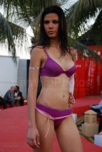 Lingerie Fashion Show by Triumph at Hotel Renissance on 29th Jan 2008 (31).jpg