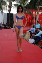 Lingerie Fashion Show by Triumph at Hotel Renissance on 29th Jan 2008 (32).jpg