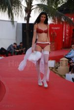 Lingerie Fashion Show by Triumph at Hotel Renissance on 29th Jan 2008 (52).jpg