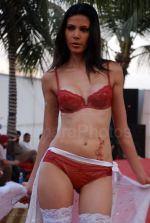 Lingerie Fashion Show by Triumph at Hotel Renissance on 29th Jan 2008 (56).jpg