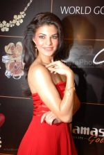 Jacqueline Fernandez announced as the brand ambassador for collection G  (23).jpg