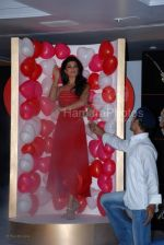 Jacqueline Fernandez announced as the brand ambassador for collection G  (9).jpg