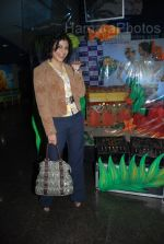 at the Fool_s Gold premiere in Fame, Andheri on Feb 6th 2008  (45).jpg