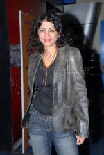 at the Fool_s Gold premiere in Fame, Andheri on Feb 6th 2008  (61).jpg