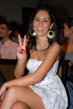 at India_s first live Bolywood flick launch by Channel V at Joss, kalaghoda on Feb 21st 2008 (24).jpg