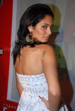 at India_s first live Bolywood flick launch by Channel V at Joss, kalaghoda on Feb 21st 2008 (80).jpg