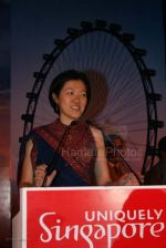 Singapore Tourism board bash at Grand Hyatt on Feb 22nd 2008 (16).jpg