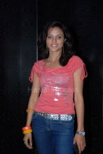 at the launch of Duniya Ki Aisi Taisi album by Dr Manoj Kumar Gupta at Lokhandwala on 24th Feb 2008 (19).jpg