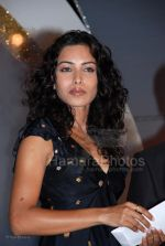 Sheetal Menon at Society Interior Awards in The Club on Feb 29th 2008 (27).jpg