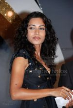 Sheetal Menon at Society Interior Awards in The Club on Feb 29th 2008 (8).jpg