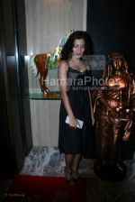 Sheetal Menon at the Bhram film bash hosted by Nari Hira of Magna in Khar on 2nd March 2008(3).jpg