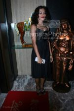 Sheetal Menon at the Bhram film bash hosted by Nari Hira of Magna in Khar on 2nd March 2008(4).jpg