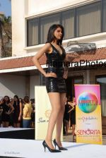 at Femina Miss India media meet in Sun N Sand on March 5th 2008(54).jpg