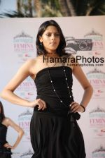 at Femina Miss India media meet in Sun N Sand on March 5th 2008(79).jpg
