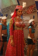 Mallika Sherawat on the sets of Maan Gaye Mughal-e-Azam at Filmistan on March 20th 2008(14).jpg
