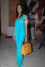 Padma Lakshmi at Manish Malhotra Show in LIFW on 29th 2008(6).jpg