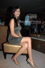 Pooja Singh at the Music Launch of Jimmy in D Ultimate Club on March 31th 2008(15).jpg