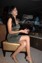 Pooja Singh at the Music Launch of Jimmy in D Ultimate Club on March 31th 2008(18).jpg