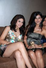 Pooja Singh at the Music Launch of Jimmy in D Ultimate Club on March 31th 2008(26).jpg