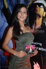 Pooja Singh at the Music Launch of Jimmy in D Ultimate Club on March 31th 2008(8).jpg