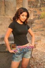 Tanushree Dutta on the sets of Movie Rama - The Saviour in Filmcity Studio, Goregaon, Mumbai on April 25th 2008 (14).jpg