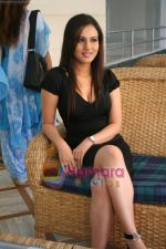 Dolly Minhas at Don Muthuswami press meet in Raheja  Classic on May 3rd 2008(4).JPG