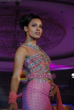 Model walks on the ramp for Tan Jewels fashion show in Taj Land_s End on May 3rd 2008(2).JPG