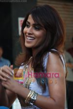 Genelia Dsouza at the Music Launch of Jaane Tu Ya Jaane Na in Shammi Kapoor_s residence on May 20th 2008(7).JPG