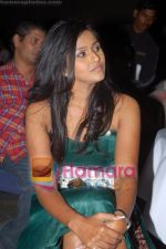 Smita at the Launch of Smita_s Pop Albun on 11th June 2008(6).JPG