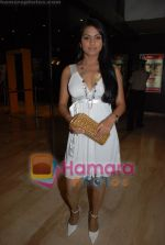 at the launch of Sukhbir_s music album Nachna in Cinemax on June 23rd 2008(82).JPG