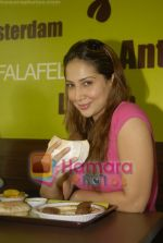Kim Sharma at Falafel and Hummus House in Lokhandwala on June 25th 2008 (10).JPG