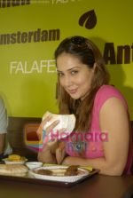 Kim Sharma at Falafel and Hummus House in Lokhandwala on June 25th 2008 (12).JPG