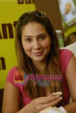 Kim Sharma at Falafel and Hummus House in Lokhandwala on June 25th 2008 (14).JPG