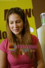 Kim Sharma at Falafel and Hummus House in Lokhandwala on June 25th 2008 (17).JPG
