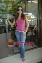 Kim Sharma at Falafel and Hummus House in Lokhandwala on June 25th 2008 (24).JPG