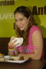 Kim Sharma at Falafel and Hummus House in Lokhandwala on June 25th 2008 (9).JPG