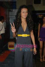 Pia Trivedi at Channel V get Gorgeous press meet in Fame, Andheri on June 24rd 2008(3).JPG