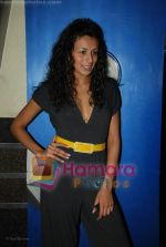 Pia Trivedi at Channel V get Gorgeous press meet in Fame, Andheri on June 24rd 2008(5).JPG