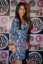 Sophie Chaudhary at MTV License to Flirt launch at Taj Hotel on June 25th 2008(11).JPG