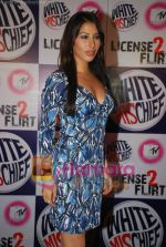 Sophie Chaudhary at MTV License to Flirt launch at Taj Hotel on June 25th 2008(12).JPG