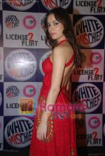 at MTV License to Flirt launch at Taj Hotel on June 25th 2008(48).JPG