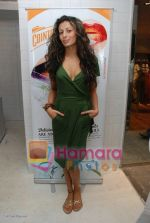 Pia Trivedi at the launch of D7 store in Mumbai on June 26th 2008(4).JPG