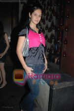 at the launch of Killer Loop glasses in Shiro, Mumbai on July 2nd 2008(110).JPG