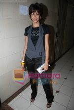 Hot sizzling babes at Faisal Khan_s bday bash for girlfriend Shikha in Black on July 7th 2008(42).JPG
