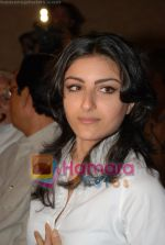 Soha Ali Khan at UTV and CCBT launch signature campaign in ITC Parel on July 7th 2008(3).JPG